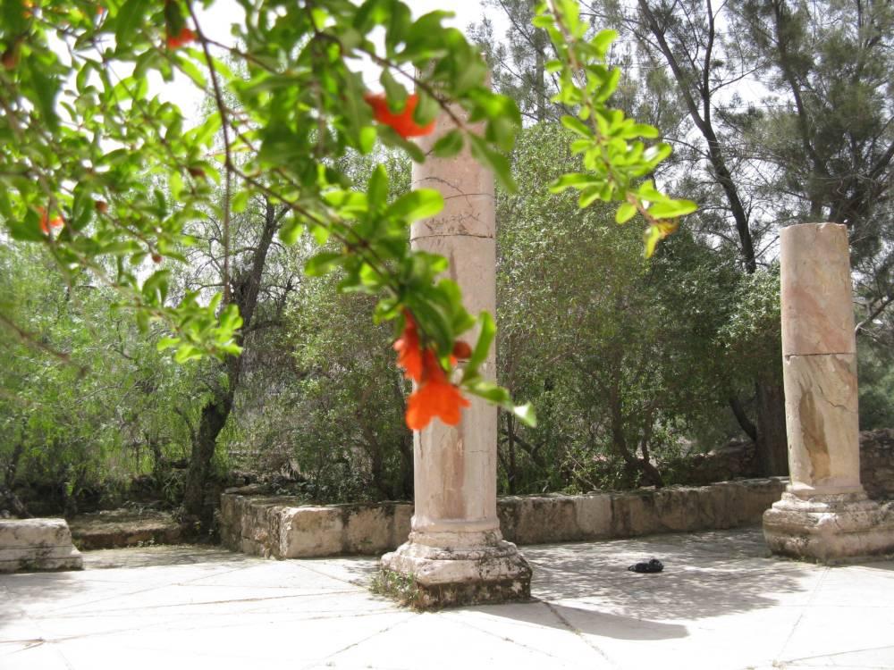 Random Pics from Amman (2/6)